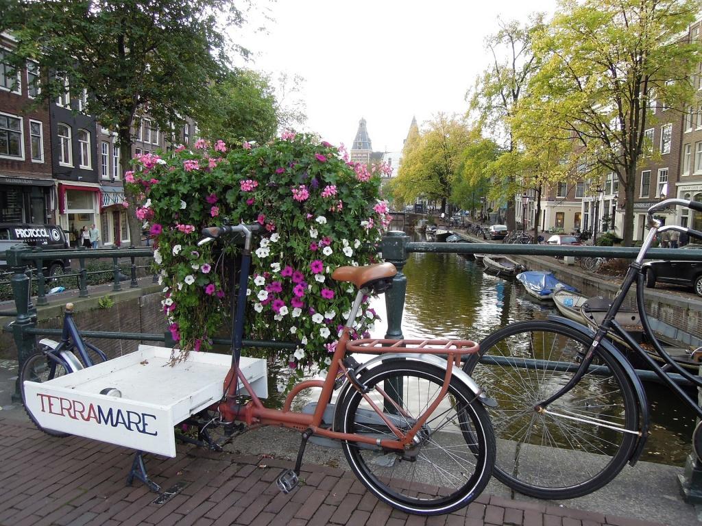 Fahrräder in Amsterdam (Foto: anneileino unter CC0 Public Domain via Pixabay)